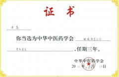 管城中医院周围血管病科主任李霏当选中华中医药学会继续教育分会